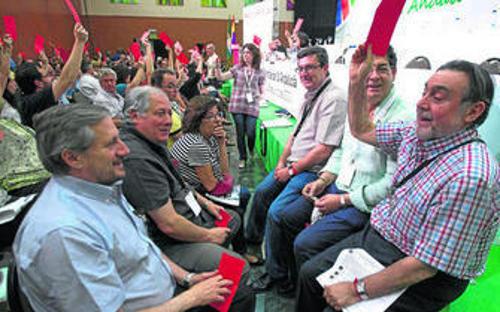 Asamblea IU Andalucia 2013
