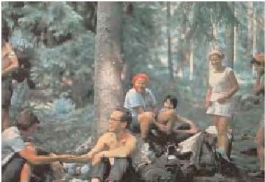 Wojtyla campestre-4
