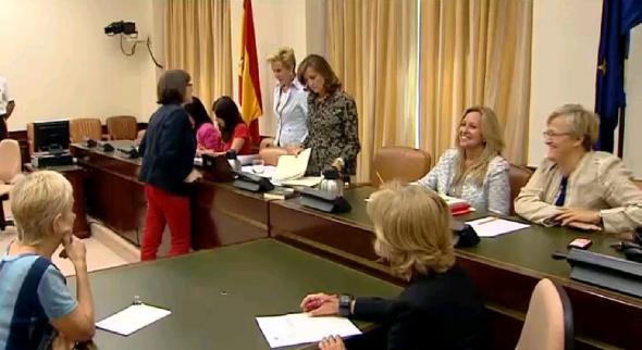 Comisión Igualdad Congreso Diputados 2013