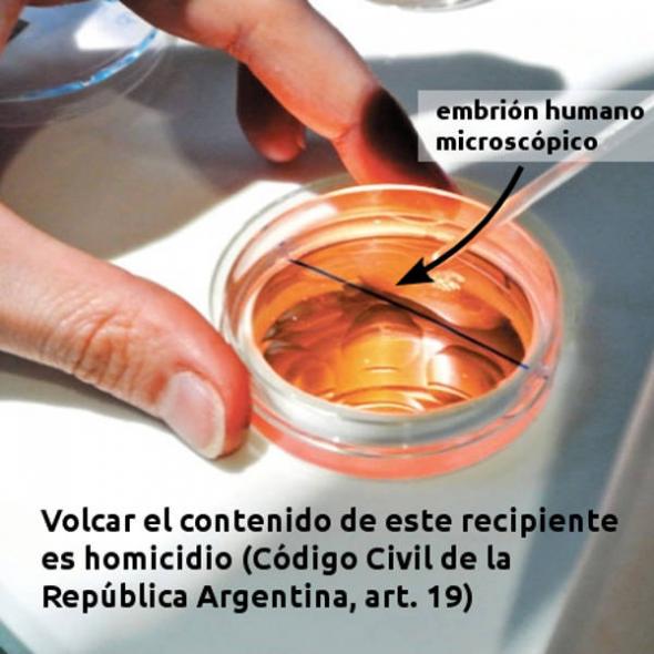 embrion-homicidio