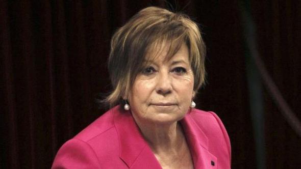 Celia Villalobos diputada PP 2014