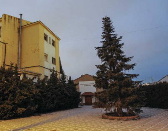Escuela-Magisterio-Ave-Maria Granada