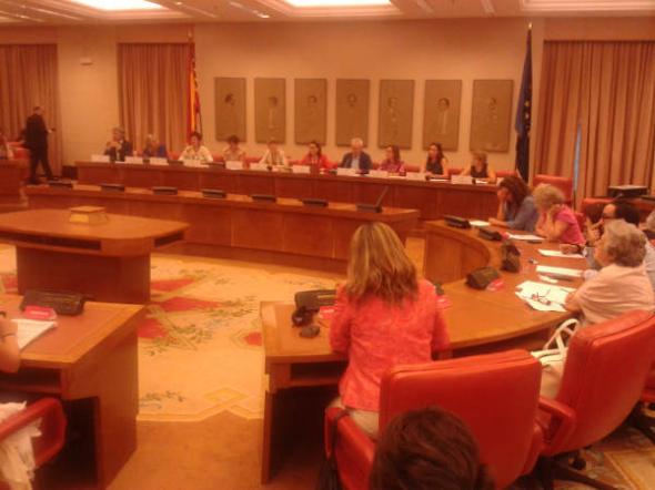 Seminario aborto Congreso 2014