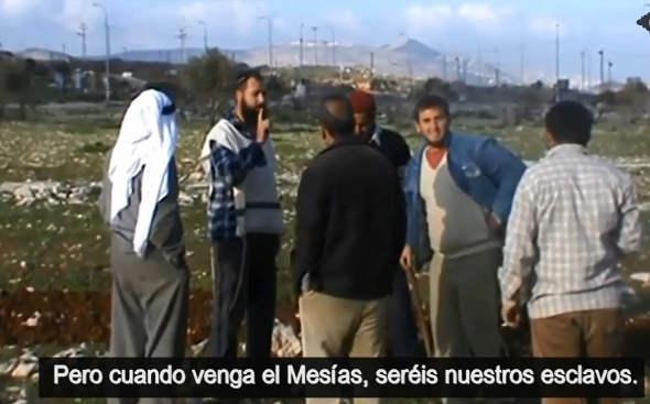colonos judios a palestinos