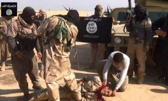 yihad estado islámico 2014