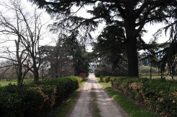 Jardines de la quinta de Torre Arias
