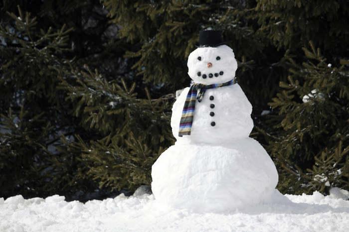 muneco de nieve