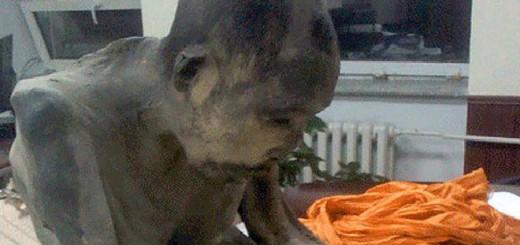 Las autoridades budistas dicen que el monje está en un profundo estado de meditación.
