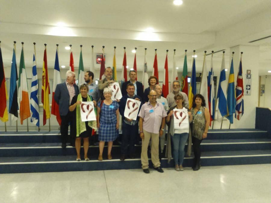 Colectivos inmatriculaciones Parlamento Europeo 20150714