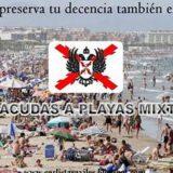 carlistas decencia playas 2015