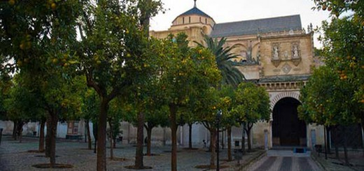mezquita Cordoba patio naranjos