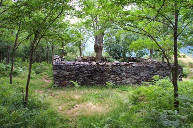cementerio Teresa en Bausen