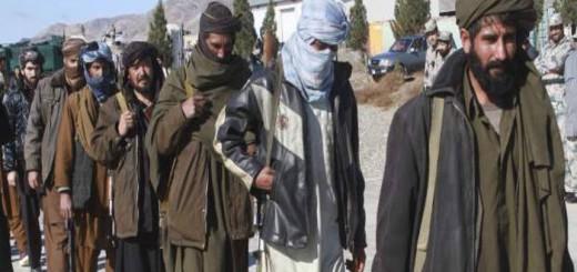 talibanes Afganistan 2016
