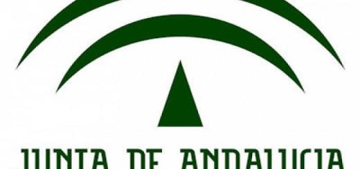 logo CEJA educacion Andalucia