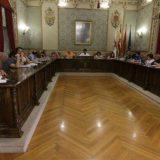 Pleno Tudela 2016