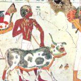 exenciones fiscales antiguo Egipto