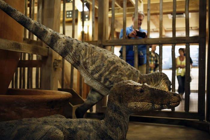arca-de-noe-ham-en-usa-2016-dinosaurios