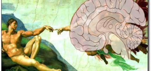 cerebro y religion