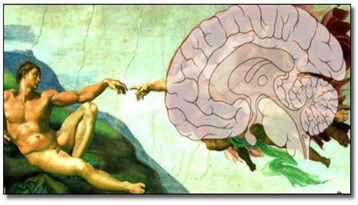 Religión y neurociencia Observatorio del Laicismo Europa