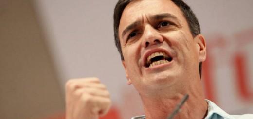 pedro sanchez PSOE 2017