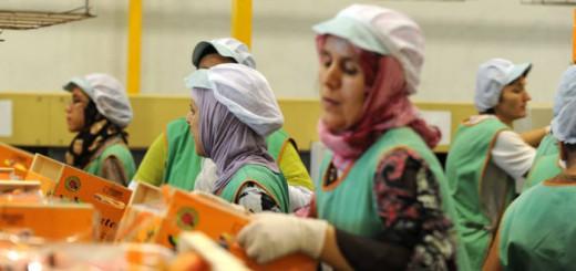mujeres musulmanas con velo en el trabajo 2017