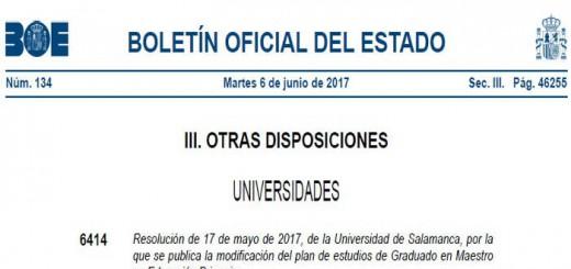 Plan estudios maestro universidad Salamanca 2017